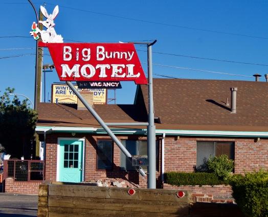 big-bunny-motel-sign-denver-co